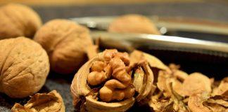 proteinquelle walnuss