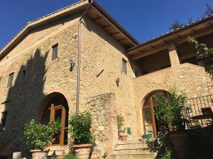i pini San Gimignano